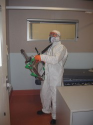 Mould Remediation Using Fogger